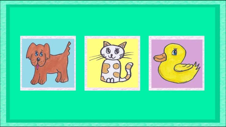 Learn German: ANIMALS (What's missing game)