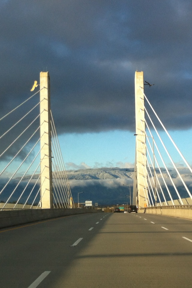 Golden Ears Bridge, heading towards the snow capped peaks.