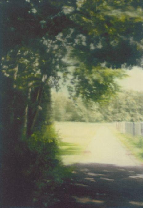 Gerhard Richter, Sommertag (Summer Day), 1999, 117 cm x 82 cm, Oil on canvas