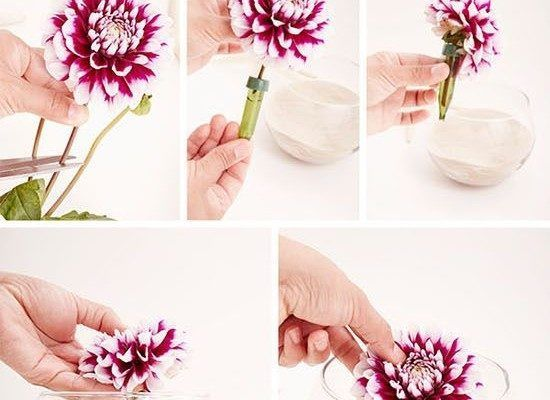 [tps_header]Create the wedding of your dreams and save time and money with these DIY centerpieces, including: submerged flowers, succulent gardens, faux cotton plants, lace covered vases and tiny herb bouquets!    (ad...