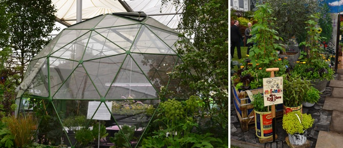 Chelsea Flower Show plants: the Great Pavilion – 10 stands for urban garden inspiration