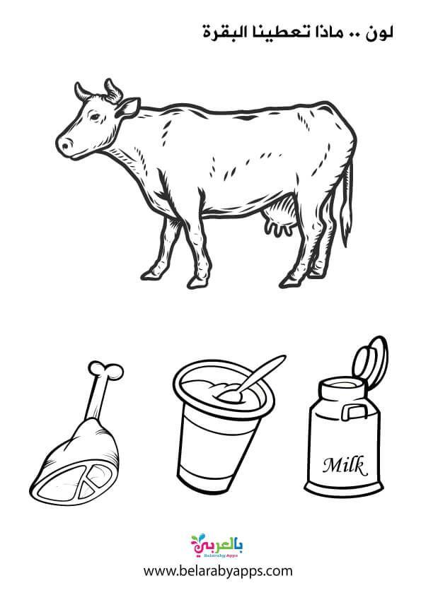 صور ورسومات تلوين وحدة الغذاء الغذاء الصحي والغير صحي بالعربي نتعلم In 2021
