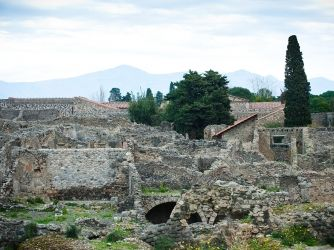 Find out more about the history of Pompeii, including videos, interesting articles, pictures, historical features and more. Get all the facts on HISTORY.com