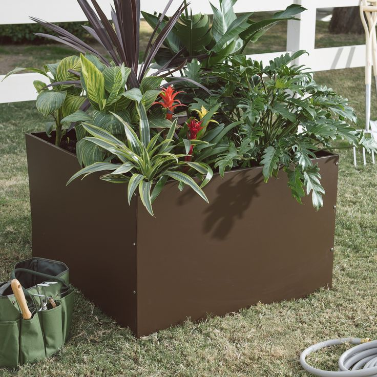 1000+ Ideas About Large Outdoor Planters On Pinterest