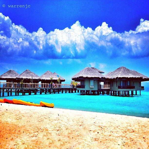 Dos Palmas Puerto Princesa Palawan , Philippines- Cody? Wanna come with me? I'll need an interpreter