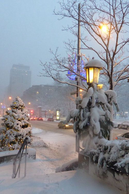 """plasmatics-life: """"A Snowy Day in Montreal ~ By Anng48 """""""