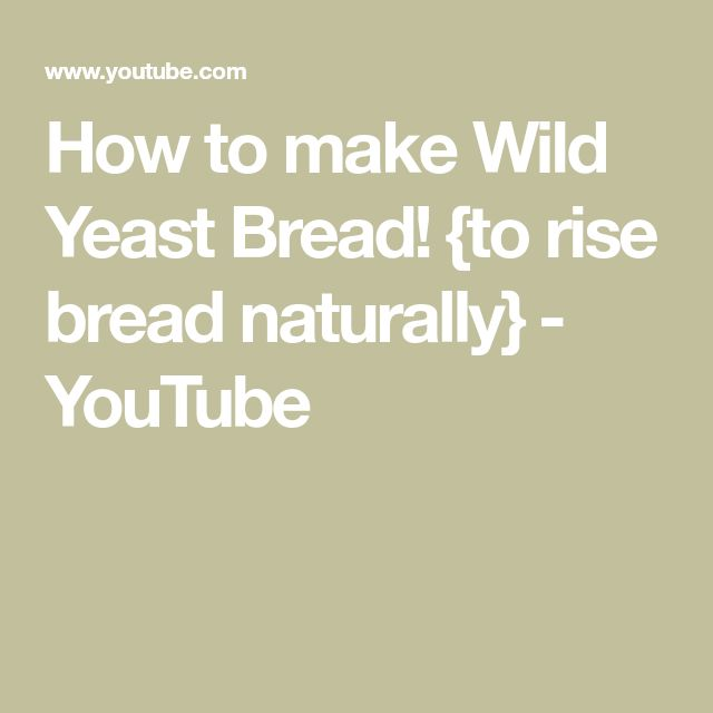 How to make Wild Yeast Bread! {to rise bread naturally} - YouTube