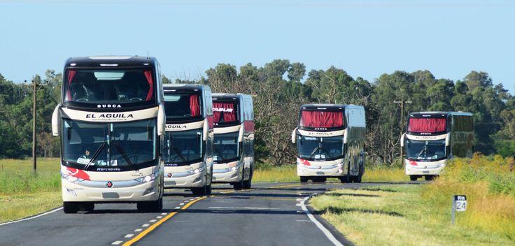 10 Buses Volvo Euro 5 para la Costa Atlántica     Platabus, Sol Bus y El Águila incorporan a su flota 10 buses Volvo para dar respuesta a la demanda de la temporada alta, fortalecer el servicio h... http://sientemendoza.com/2017/01/03/10-buses-volvo-euro-5-para-la-costa-atlantica/