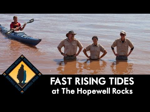 Fast Rising Tide at The Hopewell Rocks - YouTube