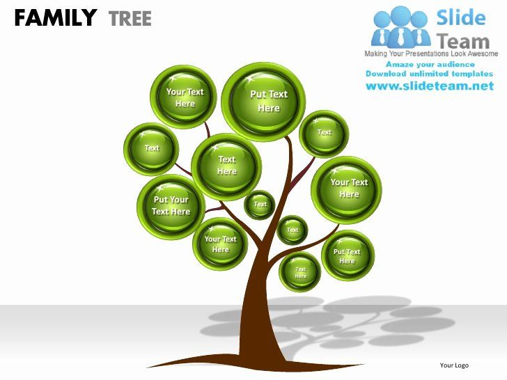 Family Tree Template 29 Download Free Documents In Pdf Word