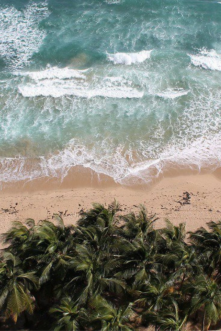 Beaches, Beer, and More: 10 Things To Experience in Rincon, Puerto Rico
