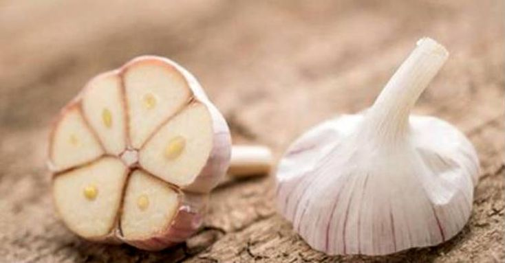 Garlic Kills 14 Kinds Of Cancer And 13 Types Of Infection. Why Don't Doctors Prescribe It