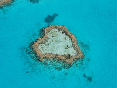 Heart reef, in the Whitsunday's. QLD, Australia.