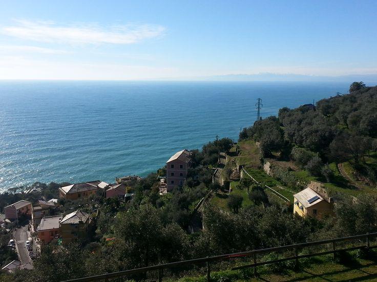 Sense of freedom looking at the Italian Riviera horizon