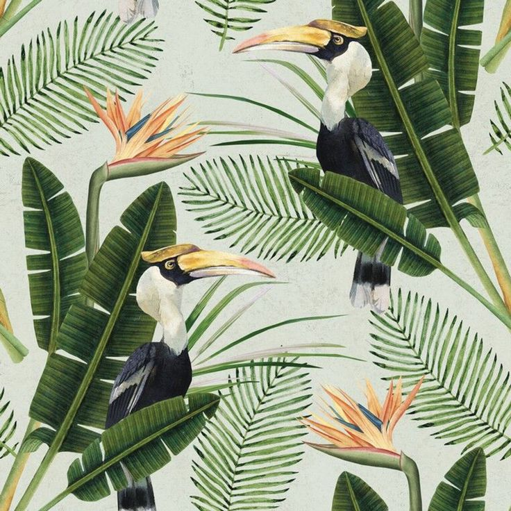 Birds Of Paradise Wallpaper from Mind The Gap