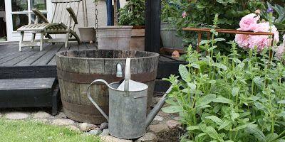 OPSAMLING AF VAND - Rain-water - use it