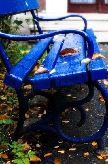 "Saatchi Art Artist Dan Cristian Lavric; Photography, ""Blue Autumn - Limited Edition 1 of 5"" #art"