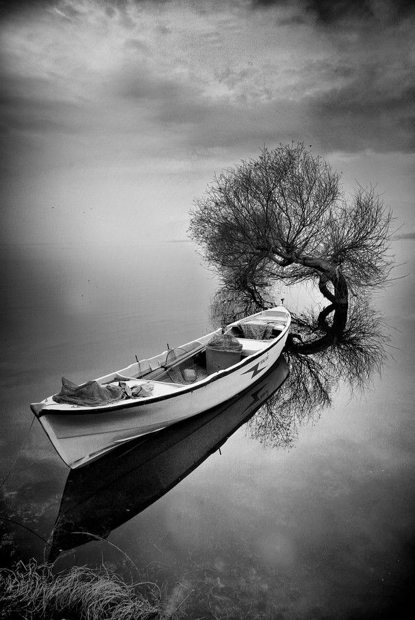 Silence, old wooden boat, tree, water, clouds, reflections, beauty, solitude, photo b/w.