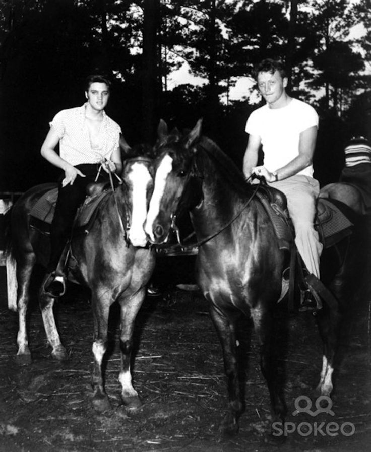 "Elvis and Red West on the trail on the Gulf Hills Dude Ranch in Ocean Springs, MS. Is this a ""new"" shot from Elvis' July 1956 vacation? From Elvis Collectors."