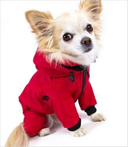 Doggy snow overall.  Designed in Iceland for use in extremely cold weather.  It is insulated and has a fleece lining.  It is waterproof, windproof, and dirt resistant. libby needs one of these!