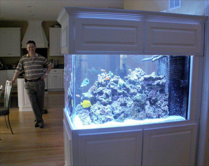 Room Divider Aquarium And Owner   Blue Planet Aquarium
