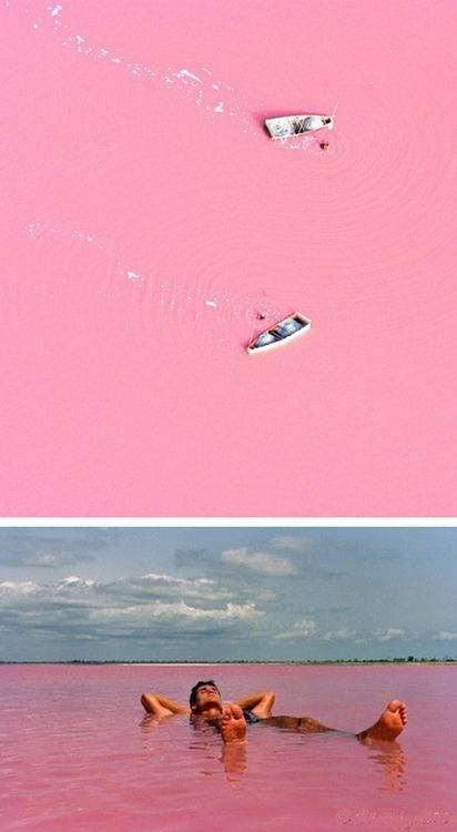 Senegal's Lake Retba- special salt in the water makes the lake pink