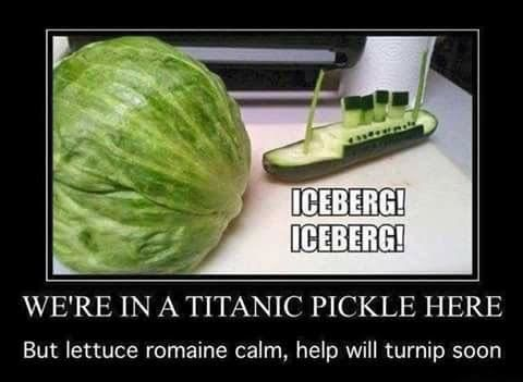 OMG I actually laughed at this!