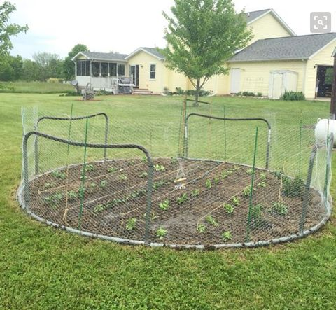 Look At This Amazing Way A Broken Trampoline Was Repurposed. Add chicken wire around the outside to keep critters out of your garden.