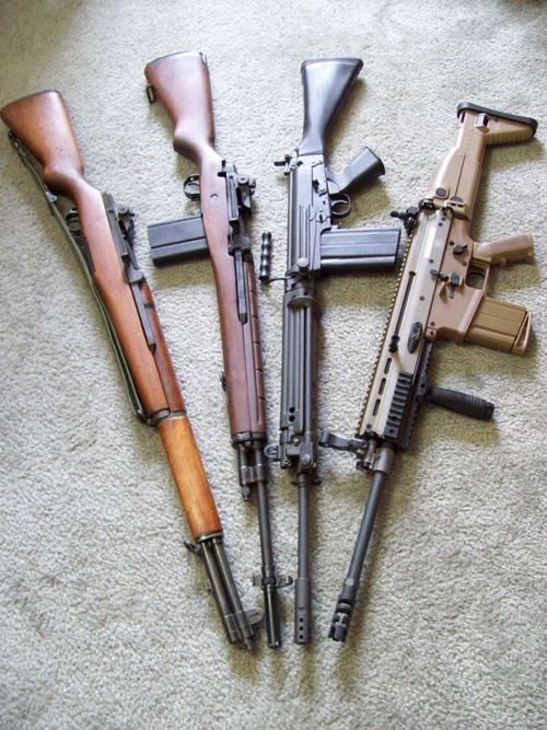 Springfield M1 Garand, Springfield M14, FN FAL, FN SCAR-17. Last three in 7.62X51mm NATO (aka .308 Winchester). The Garand is in 7.62X63mm (.30-06 US rifle).