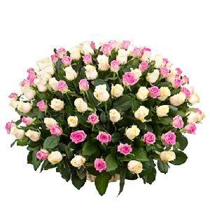 Купить цветы в Москве дешево - Цветы - Доска обьявлений | Купить подарки…