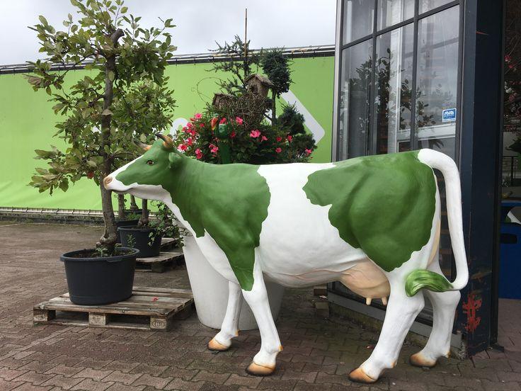 Art cow in Alkmaar
