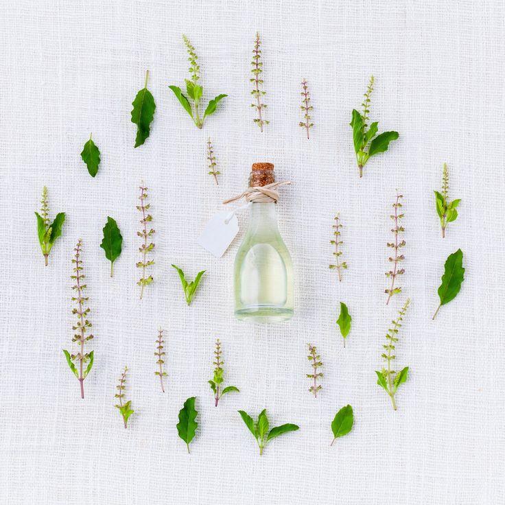 Kosmetika, kterou můžeme běžně koupit v obchodě, je v naprosté většině případů plná ropy a chemie. Tyto přípravky z dlouhodobého hlediska nejen poškozují zdraví naší pokožky, ale skrze kůži pronikají i do našeho těla a samozřejmě škodí také životnímu prostředí.  Proto si ukážeme jednoduchý recept na výrobu domácího čistě přírodního krému na míru naší … … Celý příspěvek →