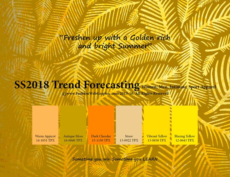SpringSummer2018 Fashion Trend Forecasting for Women, Men, Intimate, Sport Apparel - Freshen up with a Golden rich and bright Summer. www.JudithNg.com