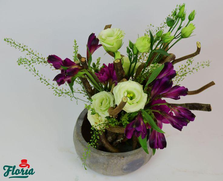 Dacă nu știi cu ce cadouri să o mai răsfeți, poți începe cu flori!  https://floria.ro/