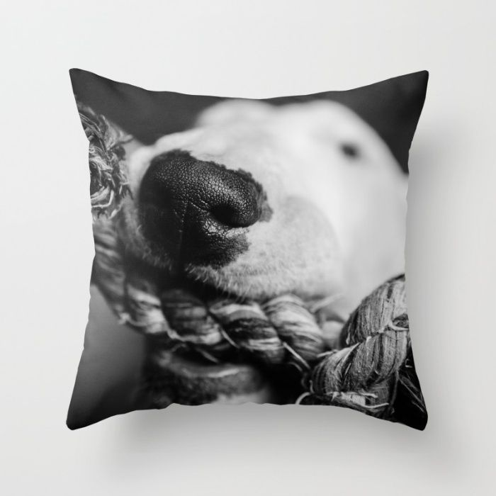 $6 OFF + free shipping on all pillows! Today only!  #photograhpy #society6 #dog #sale #off @society6