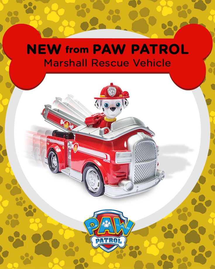 Paw Patrol Toy For Everyone : Best images about paw patrol on pinterest