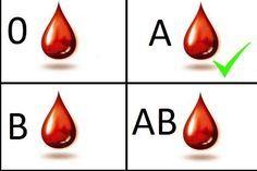 Según los investigadores James y Peter D'Adamo la buena o mala asimilación de los alimentos está condicionada por nuestro grupo sanguíneo.