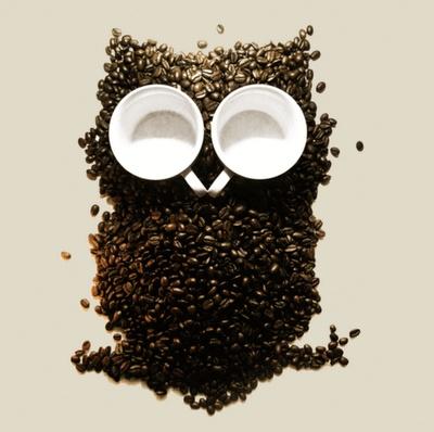 brown owls coffee