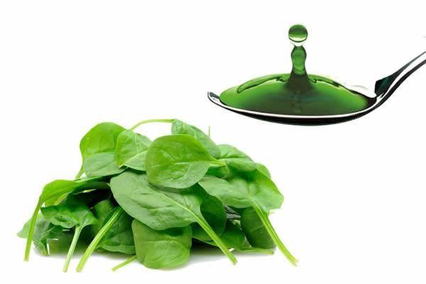 10 beneficios de la clorofila