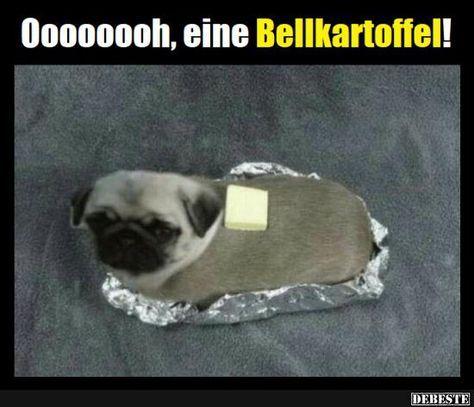 I bims like Bellkartoffel
