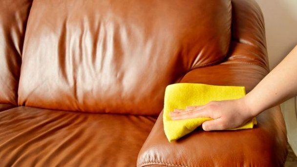 Wat Maakt Nettoyer Un Fauteuil En Cuir Zo Verslavend Dat Je Er Nooit Een Wilt Missen Netto In 2020 Cleaning Leather Couch Cat Urine Remover Leather Couch