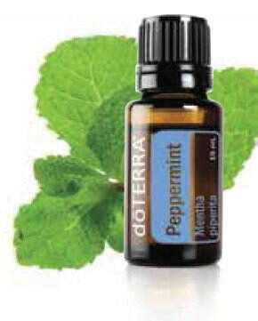 Doterra's Peppermint essential oil is great if you have spent to much time at the beach and feeling flushed or waify then add a few drops of peppermint to a damp cool cloth and apply it to the back of your neck. www.caitlinfitzpatrick.com.au