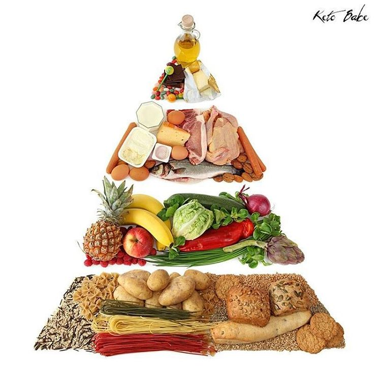''The USDA food pyramid recommends a low-fat diet that includes up to 11 servings per day of grains. To be based on grains is not the native diet for any mammal. There's only one group of animals that lives well on grains and that's birds.'' #keto #ketodiet #ketogenic #ketogenicdiet #lowcarb #ketosis #ketones #ketobabe #ketobaberocks #burnfatnotcarbs #carbskill #lchf #diet
