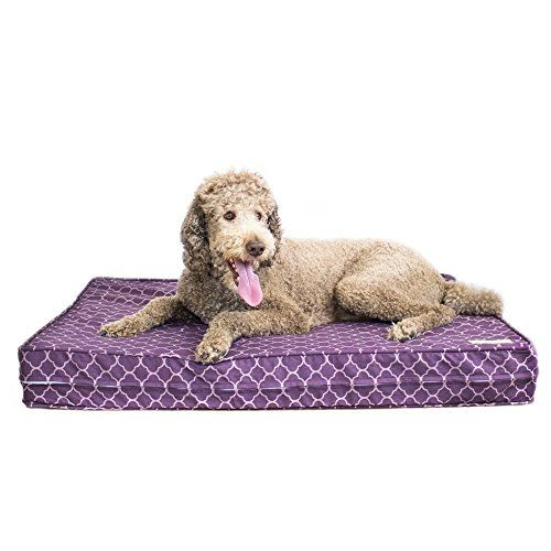 "Orthopedic Dog Bed - 5"" Thick Supportive Gel Enhanced Memory Foam - Made in the USA 