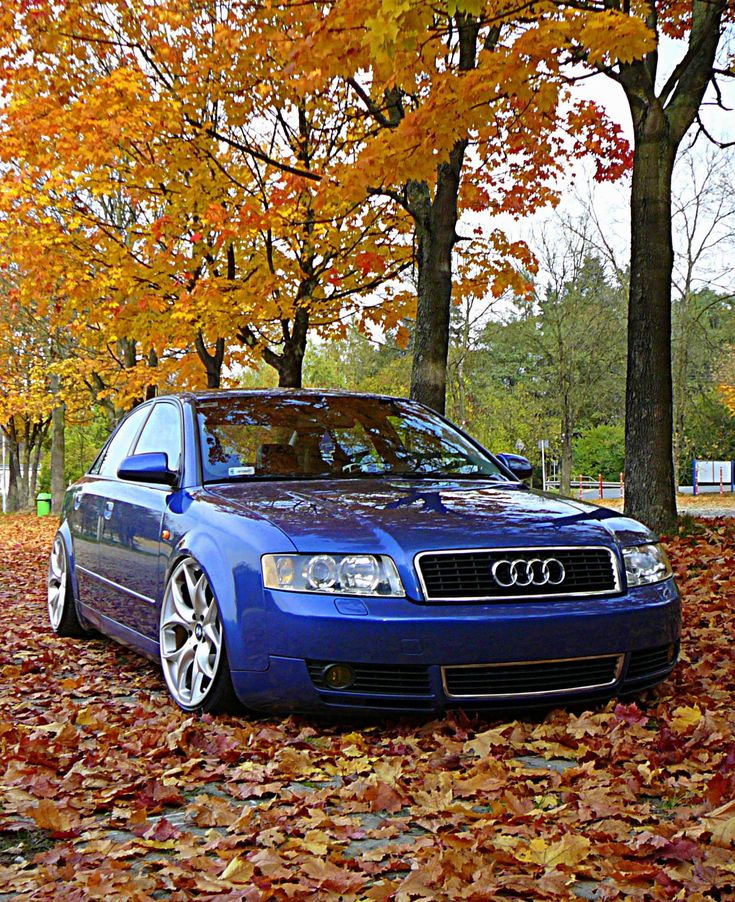 Audi A4 Sports Car: [Audi A4 B6 USA] AirRide By Bercik
