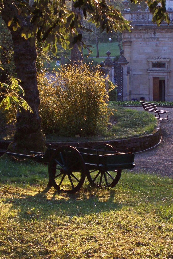 Vecchio barroccino da trasporto delle Terme # Tettuccio # Montecatini