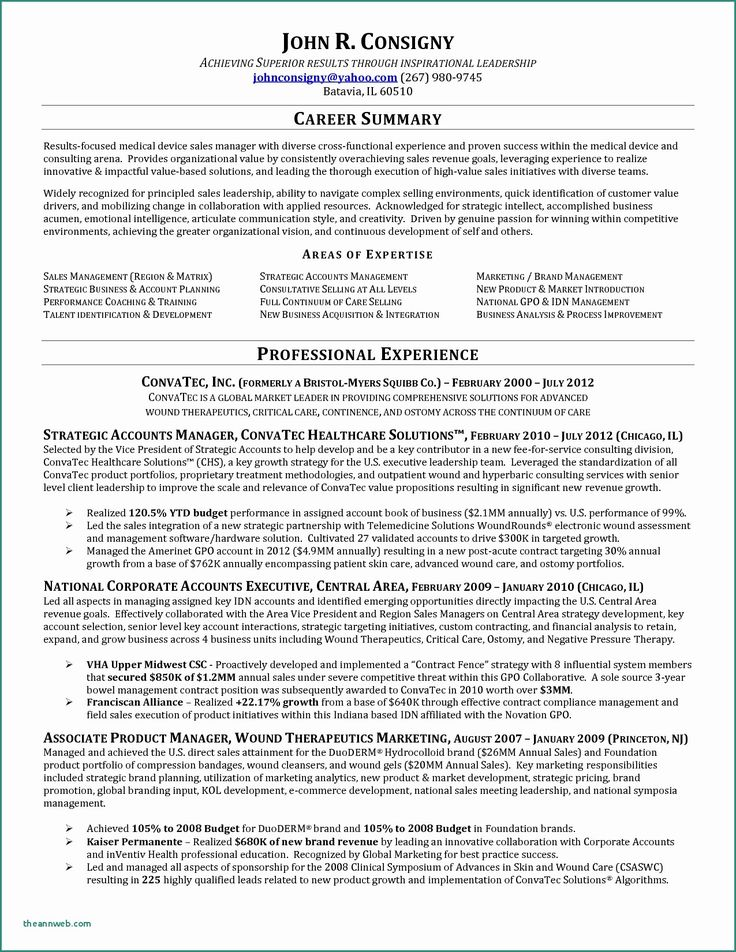 50 Inspirational Territory Sales Manager Resume in 2020