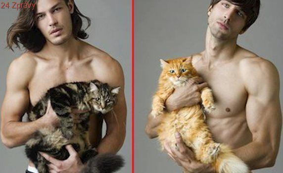 Sexy muži a roztomilé kočičky: Inspirujte se a přihlašte se do soutěže Kočka Česka!