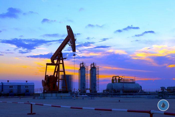 Рейтинг ТОП-20 крупнейших нефтедобывающих компаний Украины http://www.nftn.ru/blog/rejting_top_20_krupnejshikh_neftedobyvajushhikh_kompanij_ukrainy/2016-09-25-1949  $3,26 млрд.чистого дохода получили в 2015 году 20 самых доходных компаний, занимающихся нефтедобычей. Как показываетобзор рынка нефти и нефтепродуктов, составленный компанией Alliance Capital Management, Украина в первом полугодии 2016 года сократила добычу нефти на 11,9% (на 108,7 тыс. тонн) по сравнению с аналогичным периодом…