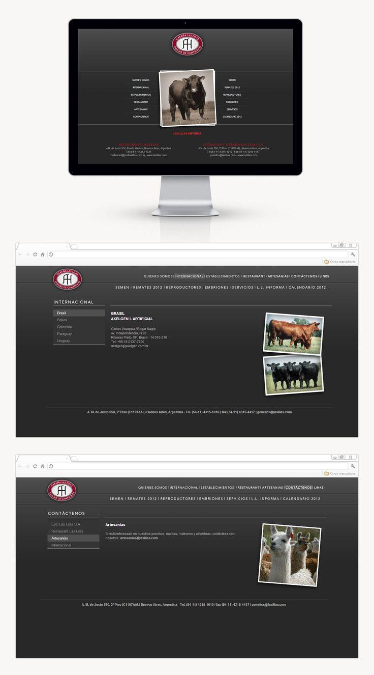 Estancia y Cabañas Las Lilas sigue confiando en DOMO dejando en nuestras manos el rediseño del sitio web según el diseño de Grupo Berro. También se realizó actualizaciones con toda la información anual de los toros como así también se actualizaron Flipbooks.